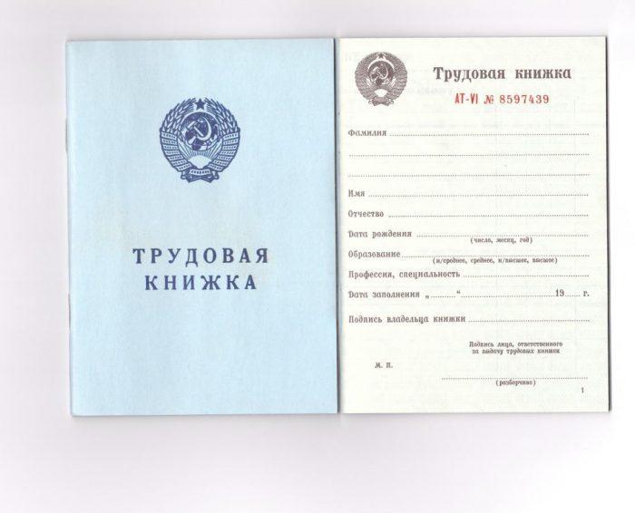 поделка трудовых книжек