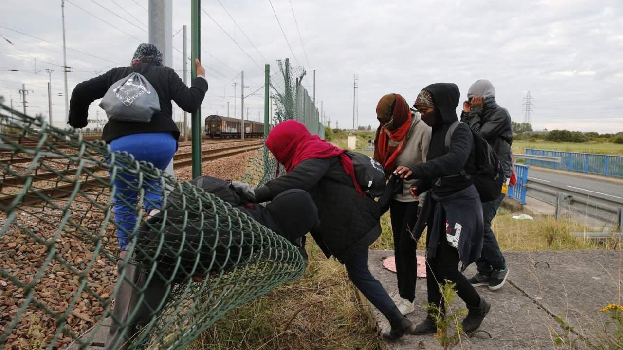Организация незаконной миграции